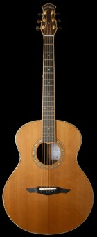 Petros Grand Concert Guitar played by Terry Lees